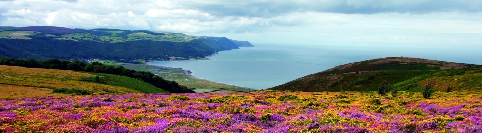 Overlooking Porlock Bay