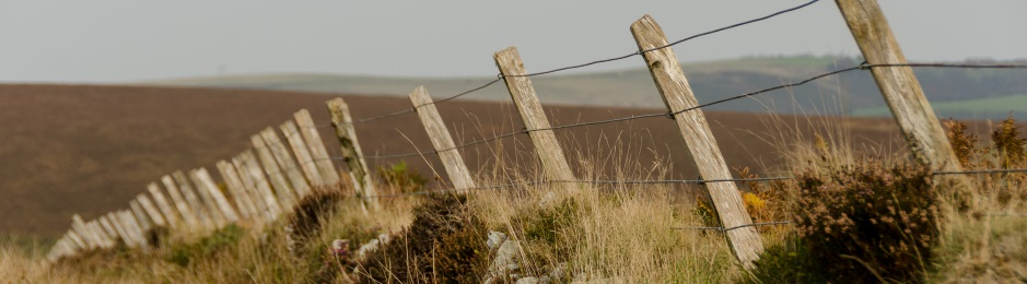 Brendon Common fence