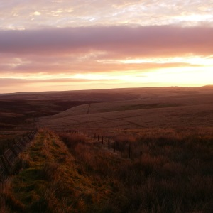 Sunrise at Larkbarrow