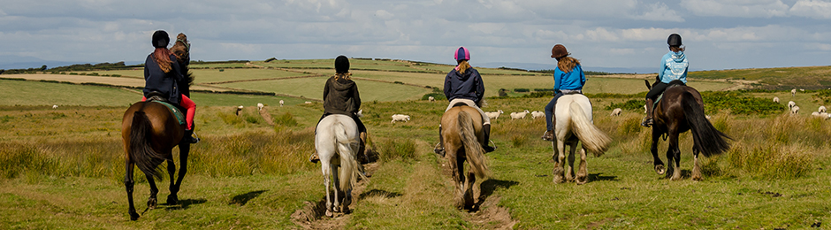 Pony trekking Southern Ball Malmsmead