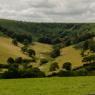 Exmoor farmland near Winsford